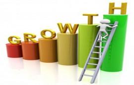 رشد گام به گام برای موفقیت کسب و کار