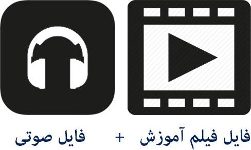 video+voice