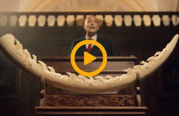 تبلیغ احساسی انجمن Stop Ivory